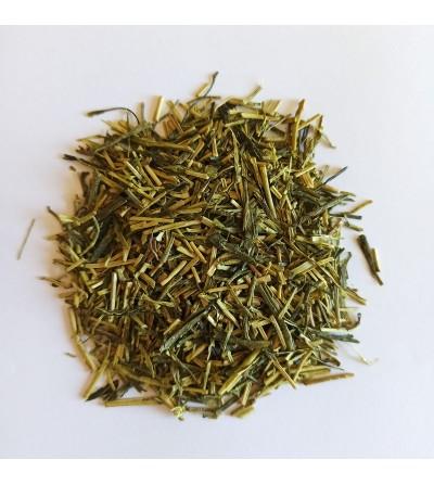 Té Kukicha Japonés Verde Bio