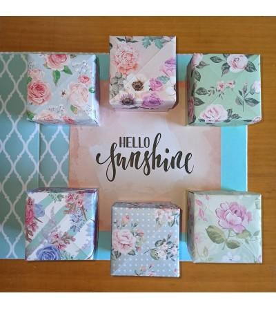 Cajas de primavera